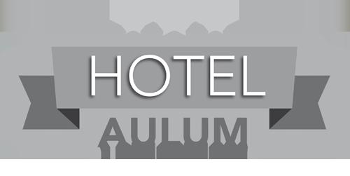 Hotel Aulum